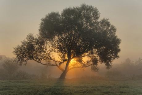 Sunrise__sunrise____by_jeremi12
